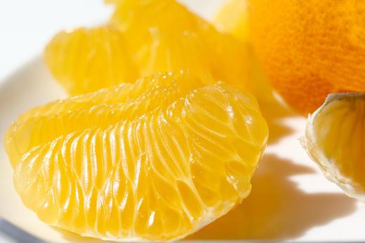 【おいしい時間】 はっさく、甘夏、ぽんかん......そっくり柑橘系フルーツたち、どう違う?